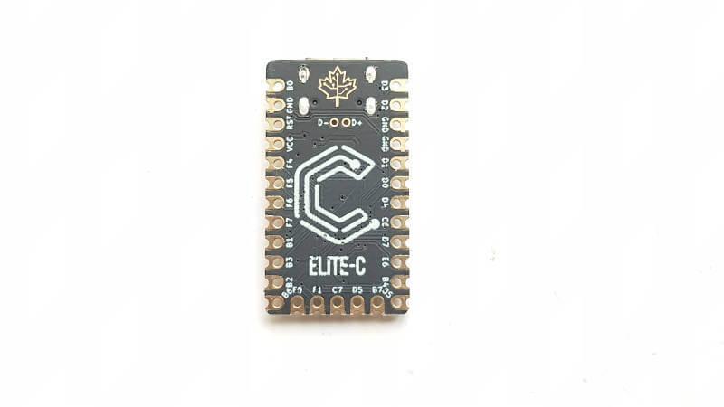 Elite C V3.1 2 800px Q70